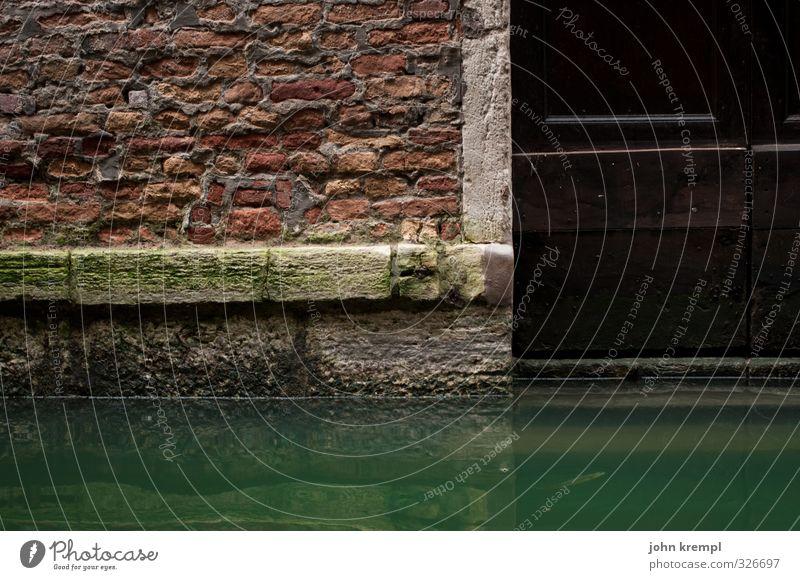 Acqua alta grün Wasser Einsamkeit Haus Wand Architektur Mauer Gebäude Schwimmen & Baden Fassade Tür Armut nass Vergänglichkeit Wandel & Veränderung Sicherheit