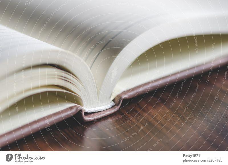 aufgeschlagener Kalender Buch Linie Business Kommunizieren Kontrolle Termin & Datum Gedeckte Farben Nahaufnahme Detailaufnahme Makroaufnahme Menschenleer