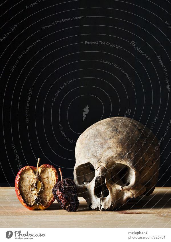 Alles hat ein Ende. Apfel Senior Kopf Schädel Kunst Maler Gemälde Barock Skelett alt gruselig trist rot schwarz Tod Farbfoto Studioaufnahme Menschenleer