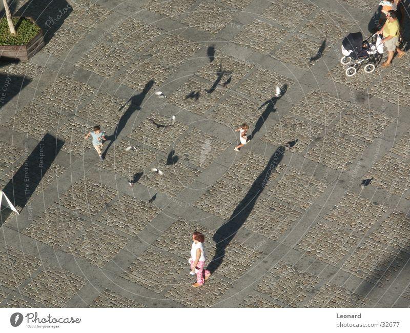 Schatten Mensch Kind Bewegung Menschengruppe Vogel Boden Ecke Etage Taube
