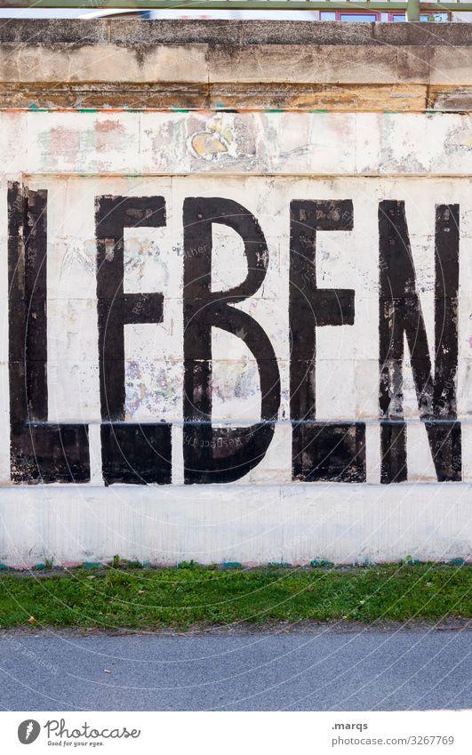 LEBEN | Geschriebenes Leben Graffiti Wand Wiese Mauer Schriftzeichen Lebenslauf