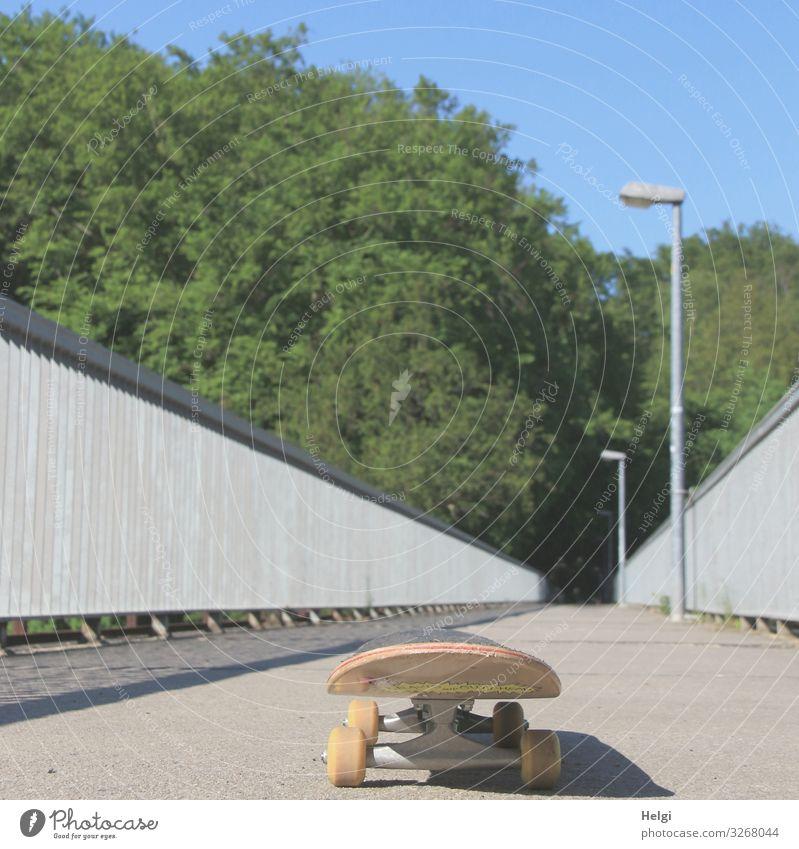 Skateboard steht auf einer menschenleeren Brücke Umwelt Natur Baum Brückengeländer Lampe Wege & Pfade stehen außergewöhnlich blau braun grau grün Beginn
