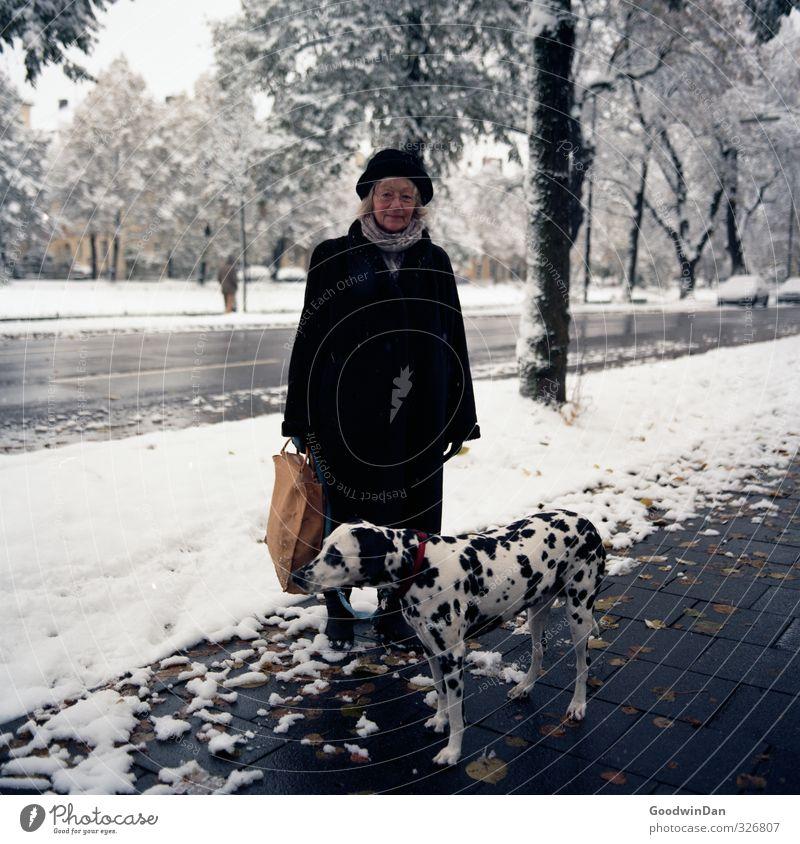 Eine Mischung wärs.. Hund Mensch Frau Natur alt Stadt schön Baum Tier Winter Erwachsene Umwelt Straße Schnee Senior feminin