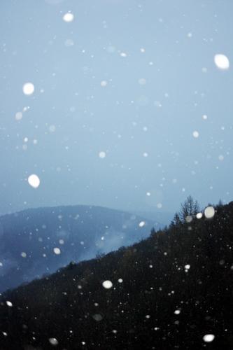 Heidelberg im Winter (2) Ferien & Urlaub & Reisen Umwelt Natur Landschaft Pflanze Urelemente Himmel schlechtes Wetter Schnee Schneefall Baum Wald Hügel