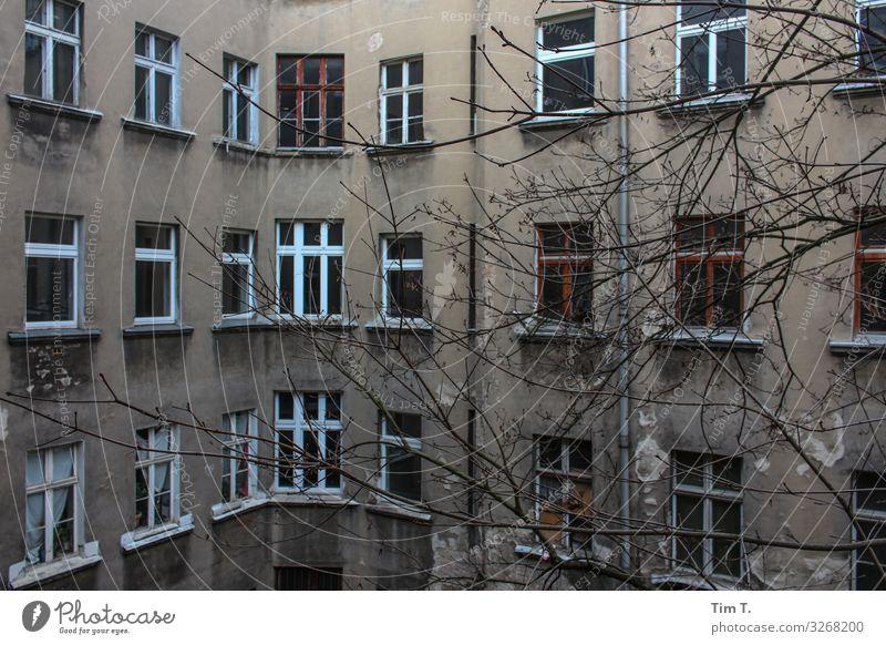 Hinterhof Berlin Prenzlauer Berg Stadt Hauptstadt Stadtzentrum Altstadt Menschenleer Haus Mauer Wand Fenster Häusliches Leben Baum Winter Farbfoto Außenaufnahme