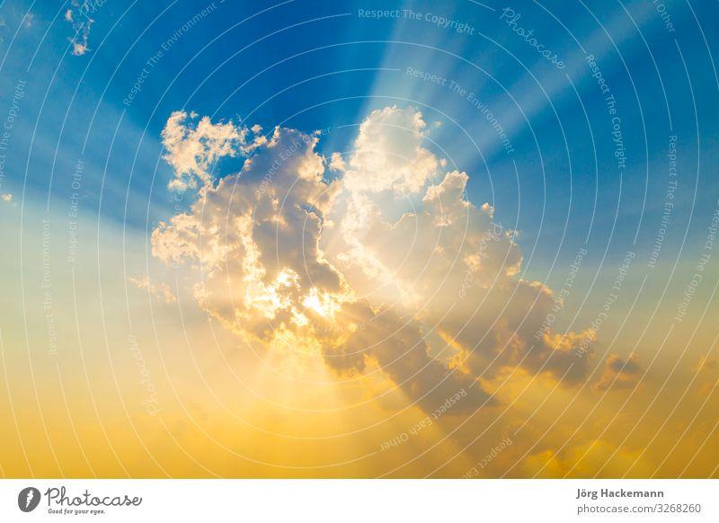 Sunset with sun rays Natur Hintergrundbild gelb Liebe Gefühle rosa Kraft Symbole & Metaphern