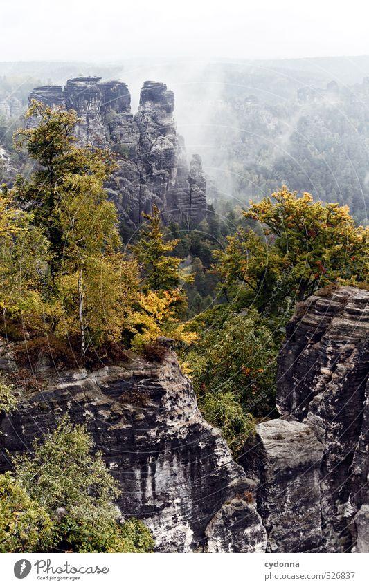 Im Nebel Natur Ferien & Urlaub & Reisen Baum Erholung Landschaft ruhig Ferne Wald Umwelt Berge u. Gebirge Herbst Freiheit Felsen Horizont Idylle