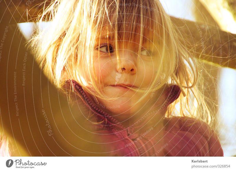 Purzel Bäumchen Mensch Kind Natur Baum Mädchen Freude Umwelt feminin Herbst Bewegung Spielen Kopf Gesundheit Gesundheitswesen blond Kindheit