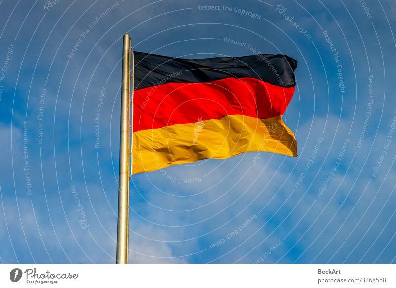 Die deutsche Flagge weht schwarz, rot, gold am Fahnenmast Freiheit Kultur Himmel Wind blau gelb Farbe Politik & Staat Zusammenhalt Land wehen Deutschland