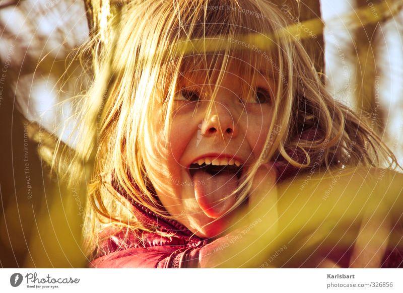 Gold Strähnchen Mensch Kind Natur Baum Mädchen Freude Umwelt Herbst Bewegung Spielen Kopf Gesundheit Kindheit Schönes Wetter lernen Bildung