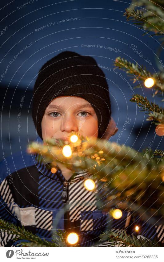 Kind hinter Weihnachtsbaum mit Lichterkette Mensch Weihnachten & Advent Baum Freude Winter Gesicht Lifestyle kalt Glück Feste & Feiern Stil Zufriedenheit