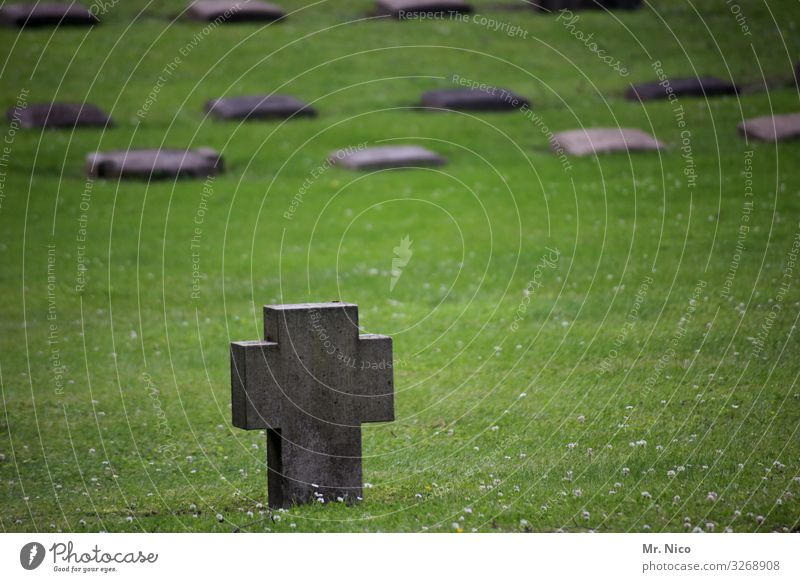 Gegen das Vergessen Wiese Traurigkeit Trauer Tod Einsamkeit Kreuz Grab Grabstein Grabmal Soldatenfriedhof Friedhof vergessen Verzweiflung Abschied Beerdigung