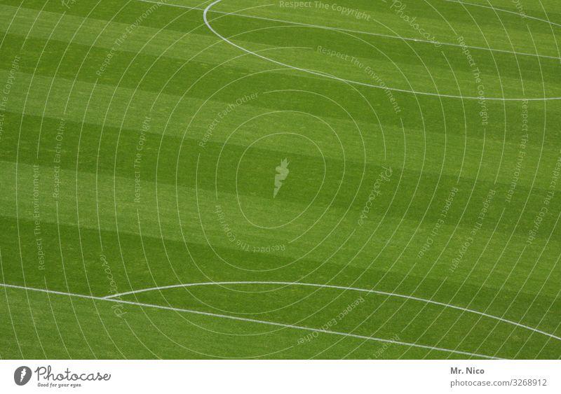 Mittelfeld grün Sport Gras Freizeit & Hobby Linie frisch Perspektive Streifen Rasen graphisch Sportrasen Sportveranstaltung saftig Stadion kreisrund