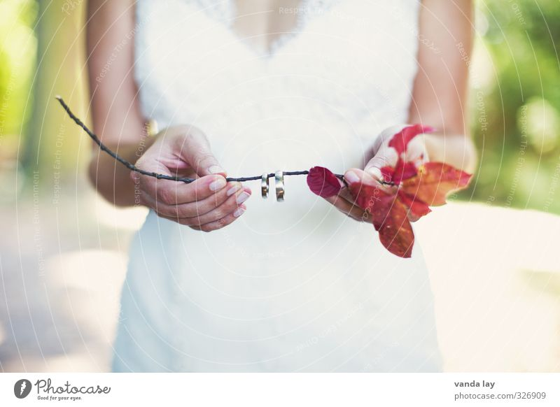 Hochzeit Jugendliche Junge Frau Hand 18-30 Jahre Erwachsene Liebe feminin Gold Romantik Kitsch Partnerschaft Ring Treue Braut Ehe