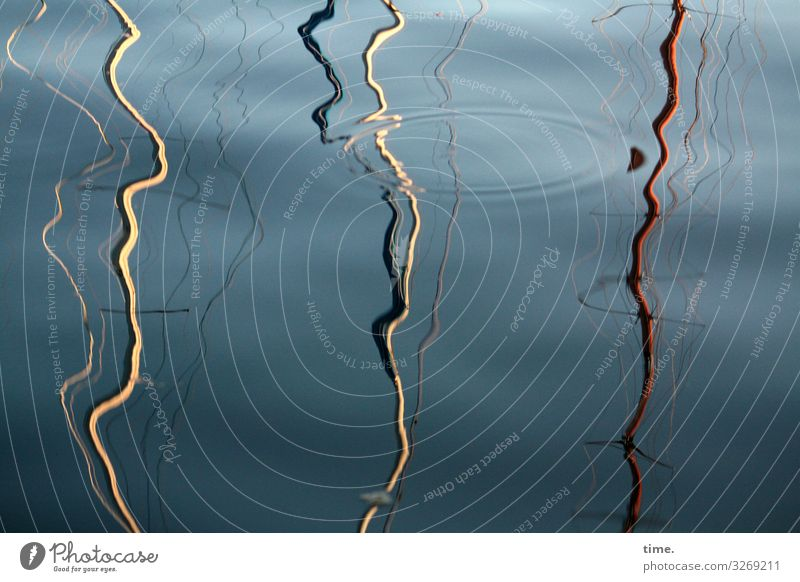 Zitterpartie (1) Wasser Himmel Schönes Wetter Schifffahrt Segelboot Segelschiff Hafen Mast Holz Kunststoff Linie Flüssigkeit maritim nass verrückt Leben