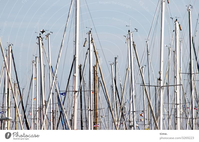 Seilschaften (XV) Schifffahrt Segelboot Segelschiff Hafen Jachthafen Mast Tau Takelage Holz Metall Zusammensein Leben Ausdauer standhaft Überraschung Bewegung