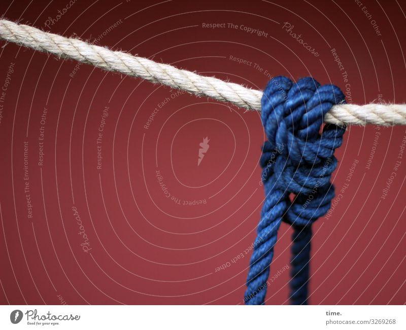 Seilschaften (X) Schifffahrt An Bord Bordwand Tau Knoten außergewöhnlich maritim sportlich blau rot weiß Zusammensein Gelassenheit geduldig ruhig Ausdauer