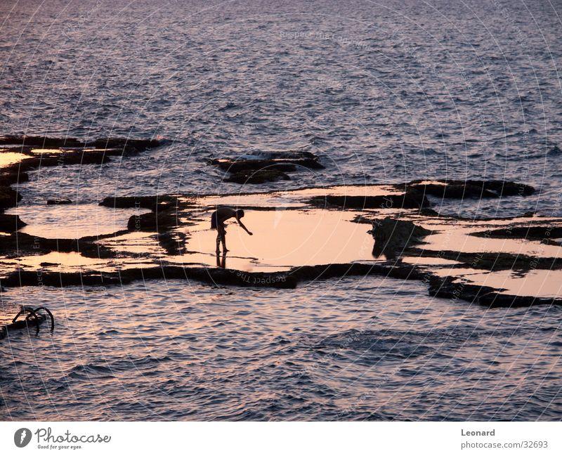 Spiegelung Meer Wellen Licht Sonnenuntergang Mensch Wasser Felsen reflection coast sea sun woman