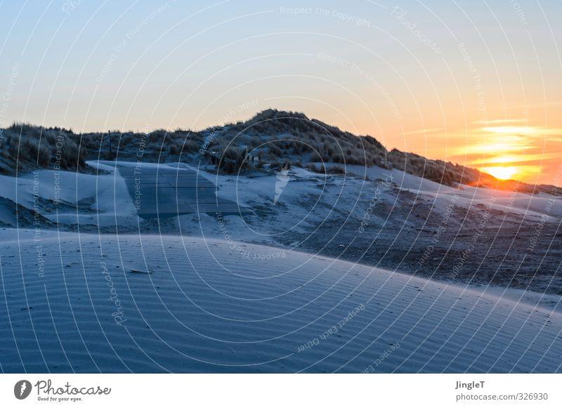 Wintersonne Ferien & Urlaub & Reisen Ausflug Strand wandern Umwelt Natur Landschaft Himmel Sonne Sonnenaufgang Sonnenuntergang Küste Nordsee Insel Ameland