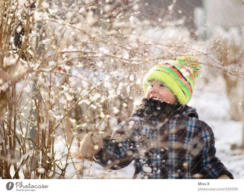 Winter Mensch Kind Freude Winter kalt Schnee Gefühle Spielen lachen Schneefall Stimmung Kindheit Lächeln niedlich Ast Kleinkind