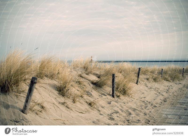 sonne.strand.meer Umwelt Natur Landschaft Urelemente Sand Wasser Himmel Wolken Schönes Wetter Gras Küste Strand Ostsee Meer Lebensfreude Warnemünde Leuchtturm