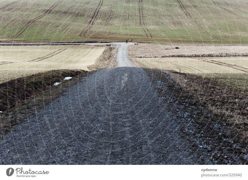 Ein weites Feld Ausflug Ferne Freiheit wandern Mensch 1 Umwelt Natur Landschaft Erde Frühling Winter Wiese Hügel Wege & Pfade Wegkreuzung ästhetisch Bewegung