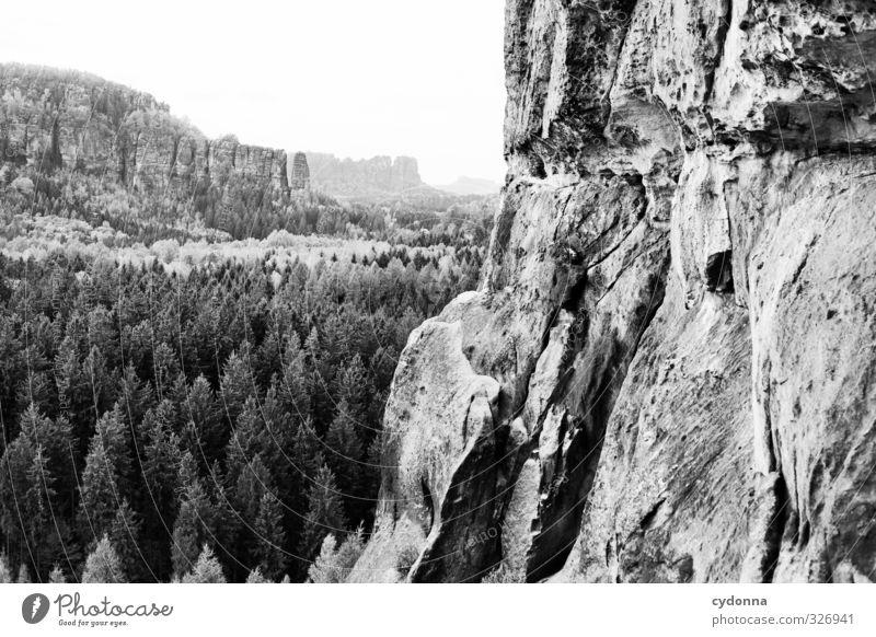 Weites Land Ferien & Urlaub & Reisen Tourismus Ausflug Abenteuer Ferne Freiheit Berge u. Gebirge wandern Umwelt Natur Landschaft Wald Felsen Schlucht Erholung