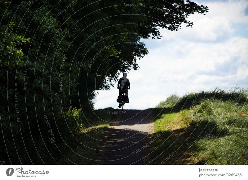 Tour im Grünen Ausflug maskulin 1 Mensch Wolken Sommer Schönes Wetter Baum Wiese Hügel Fahrrad Erholung fahren natürlich positiv Gefühle Stimmung Tatkraft
