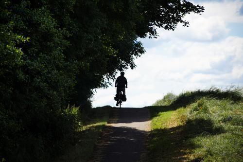 Tour im Grünen Ausflug Wolken Sommer Schönes Wetter Baum Wiese Hügel Erholung fahren Stimmung Bewegung Freizeit & Hobby Mobilität Natur Wege & Pfade