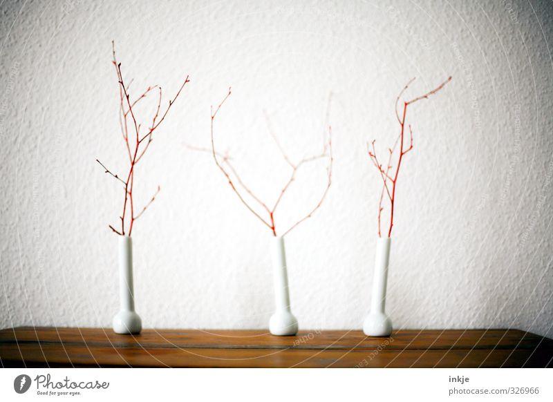 Dürre Deko weiß rot Wand Herbst Mauer braun Raum Häusliches Leben trist Dekoration & Verzierung Tisch Vergänglichkeit Wandel & Veränderung Ast Neigung