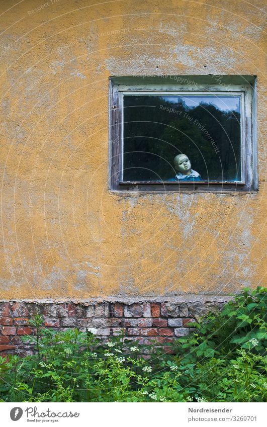 Ich seh dich..... Wohnung Sträucher Garten Dorf Kleinstadt Stadtrand Haus Ruine Gebäude Architektur Mauer Wand Fassade Fenster Spielzeug Puppe beobachten