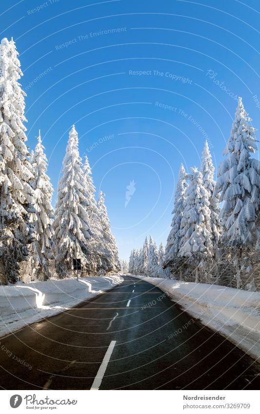 Straße durch den verschneiten Thüringer Wald Ferien & Urlaub & Reisen Natur Weihnachten & Advent Landschaft Baum Winter Berge u. Gebirge Schnee Tourismus