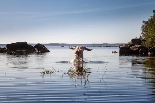 Bauchklatscher Leben Wohlgefühl Schwimmen & Baden Freizeit & Hobby Ferien & Urlaub & Reisen Abenteuer Freiheit Camping Sommer Sommerurlaub Mensch maskulin Mann