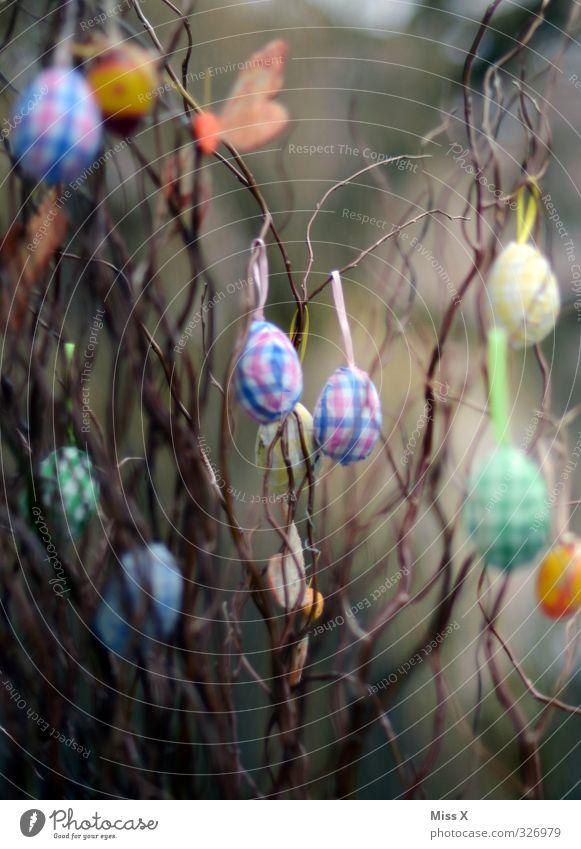 Ostern* Frühling Sträucher Dekoration & Verzierung Ast hängen verschönern Zweige u. Äste Osterei