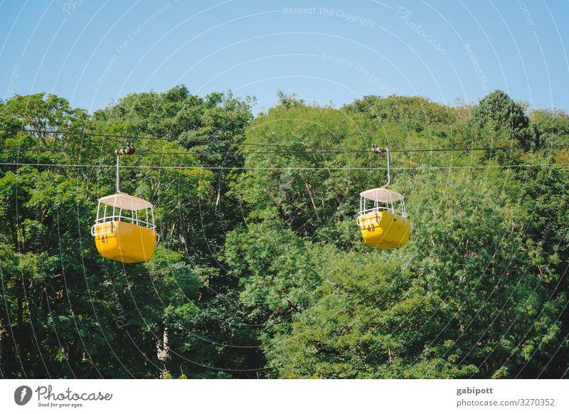 Weitsichtig | was man von hier aus sehen kann... Himmel Ferien & Urlaub & Reisen Natur Sommer grün Landschaft Wald Ferne Berge u. Gebirge gelb Frühling Bewegung