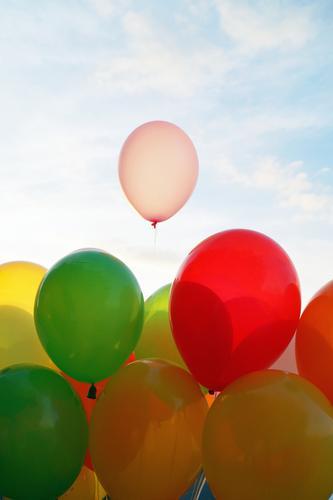 Ballons Freude Lifestyle Liebe Glück Feste & Feiern Freizeit & Hobby Geburtstag Lebensfreude Hochzeit Luftballon Valentinstag Partystimmung Liebesgruß