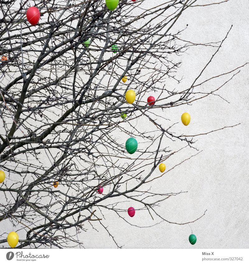Ostern Frühling Baum Sträucher hängen mehrfarbig Osterei Dekoration & Verzierung Ast Zweig Farbfoto Außenaufnahme Muster Menschenleer Textfreiraum rechts