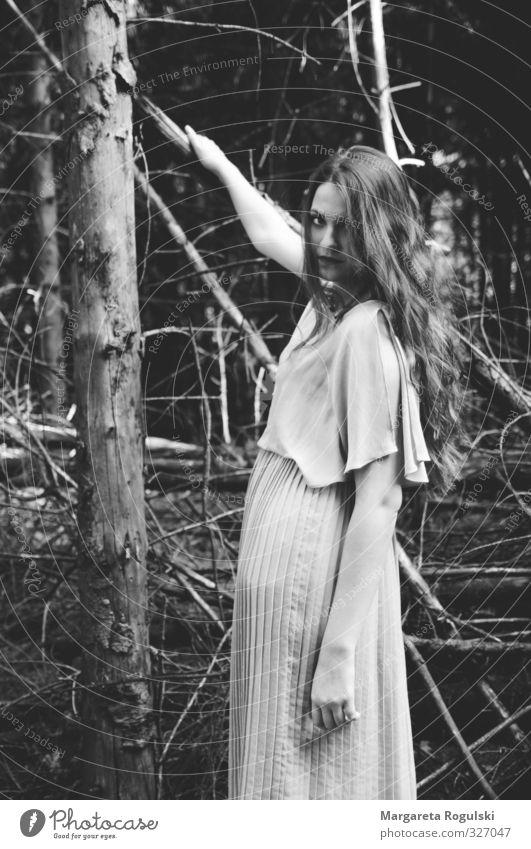 Im Wald elegant Stil Design schön Haare & Frisuren feminin Umwelt Natur Baum Kleid langhaarig hängen Blick ästhetisch außergewöhnlich bedrohlich Coolness frei