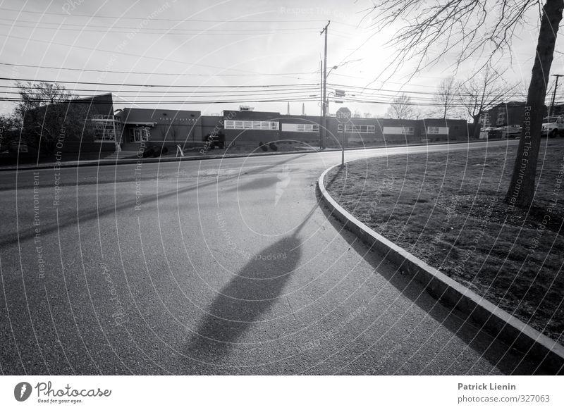 Stopschild Stadt bevölkert Haus Bauwerk Gebäude Verkehr Verkehrsmittel Verkehrswege Berufsverkehr Autofahren Straße Straßenkreuzung Wegkreuzung Einsamkeit