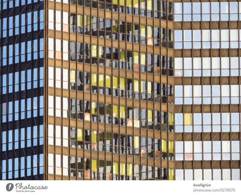 Rathaus Haus Hochhaus Fassade Fenster eckig hoch blau braun Stadt Farbfoto Außenaufnahme Menschenleer Textfreiraum links Textfreiraum rechts Licht Schatten