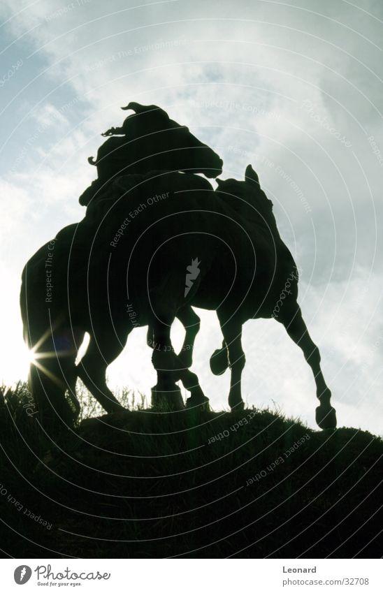Pferde Skulptur Spanien Denkmal Wolken Statue Himmel Handwerk Sonne hell sculpture horse sky cloud Silhouette sun shine