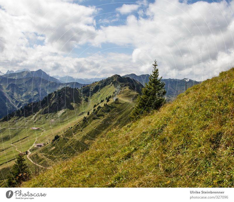 Blick vom Walmendingerhorn 2 Himmel Natur Ferien & Urlaub & Reisen grün schön Baum Landschaft Wolken Ferne Berge u. Gebirge Wiese Herbst Gras Wege & Pfade