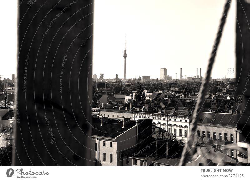 weitsichtig | über den Dächern von Berlin 2 Tourismus Ferne Sightseeing Städtereise Berliner Fernsehturm Hauptstadt Stadtzentrum Skyline Haus Hochhaus Turm