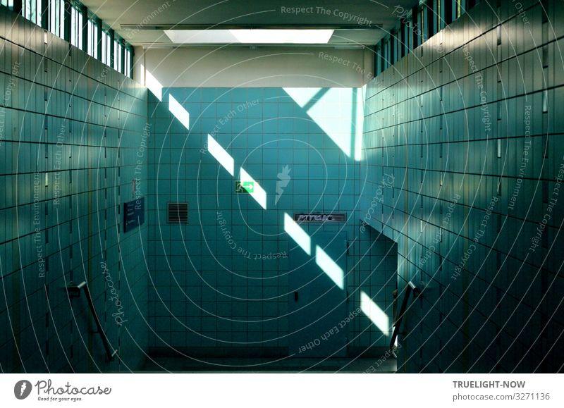 True light im S-Bhf Berlin Schlachtensee blau schön weiß Architektur Wand Stil Mauer grau Design Treppe Verkehr modern elegant ästhetisch Fröhlichkeit Coolness