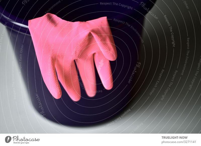 iTRASH! 2019 |...kommt weg. Häusliches Leben Wohnung Eimer Handschuhe Kunststoff Wasser Reinigen frisch Sauberkeit grau violett rosa Verantwortung achtsam