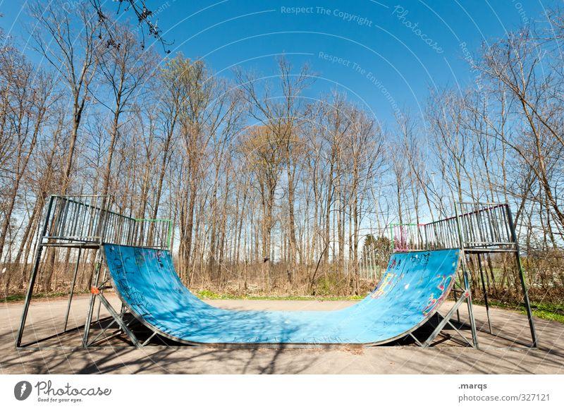 Pipe Lifestyle Stil Freizeit & Hobby Sport Skateboarding Inline Skating Halfpipe Sportstätten Wolkenloser Himmel Frühling Herbst Baum Coolness hell trendy