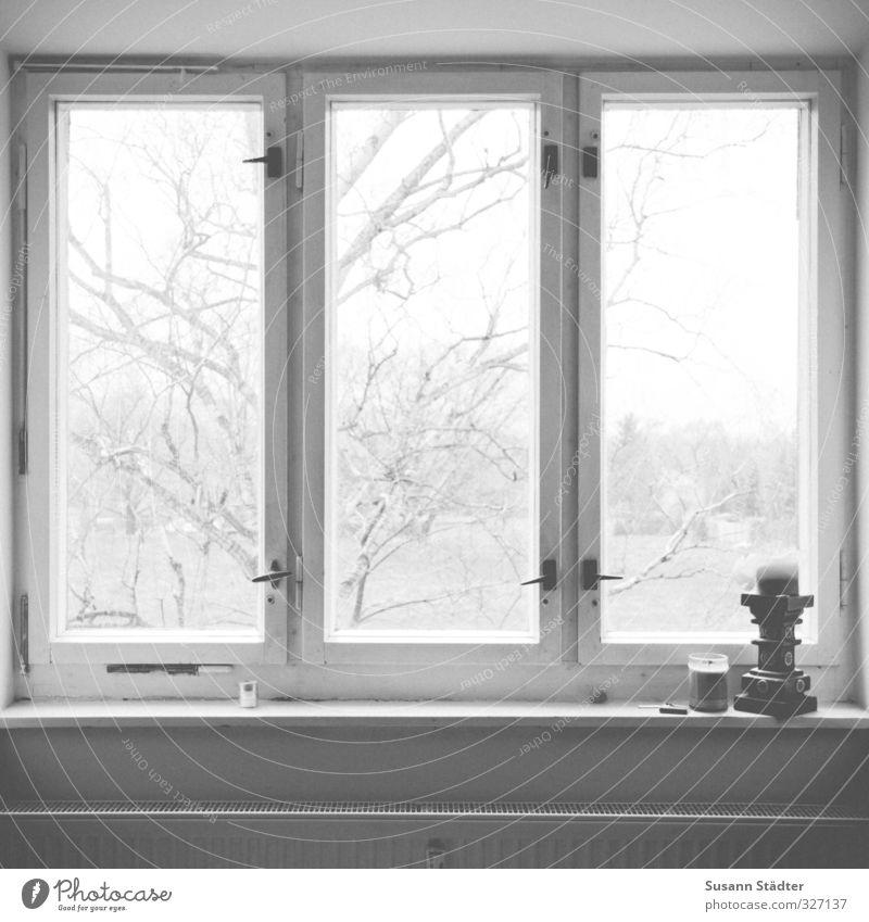night mantra. Baum Erholung ruhig Haus Fenster Kerze Fensterblick Heizkörper Altbau Buche Fensterfront Heizung Lieblingsplatz Mantra
