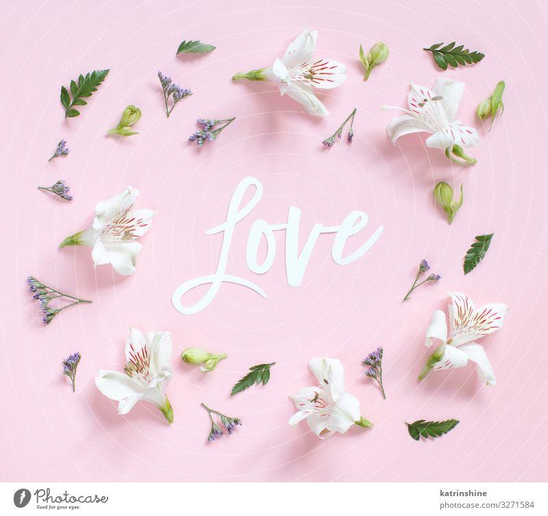 Blumen und das Wort LOVE auf einem hellrosa Hintergrund Design Dekoration & Verzierung Hochzeit Frau Erwachsene Mutter oben weiß Kreativität romantisch Briefe