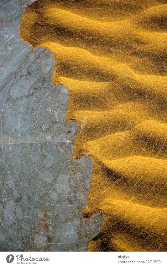 Verwüstung Sand Klimawandel Dürre Wüste Stein authentisch außergewöhnlich exotisch heiß natürlich trocken gelb grau Bewegung bizarr Natur Umwelt Vergänglichkeit
