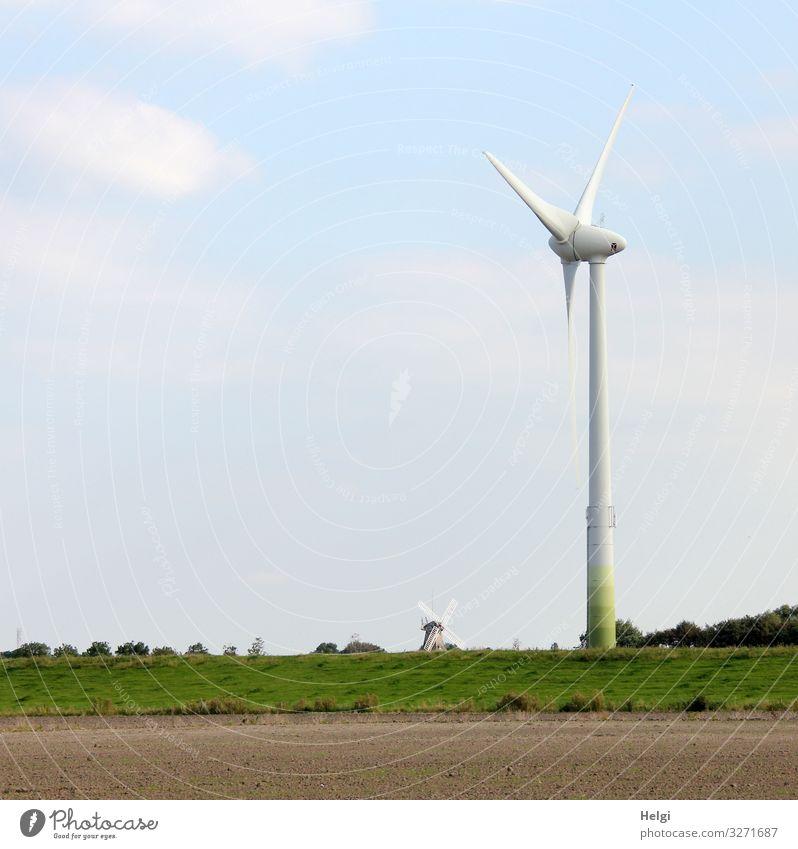 Größenunterschied Windkraftanlage und historische Windmühle Energiewirtschaft Erneuerbare Energie Umwelt Natur Landschaft Pflanze Himmel Wolken Sommer